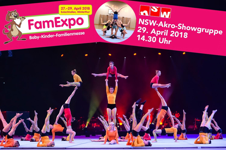 NSW-Showgruppe an der FamExpo 2018