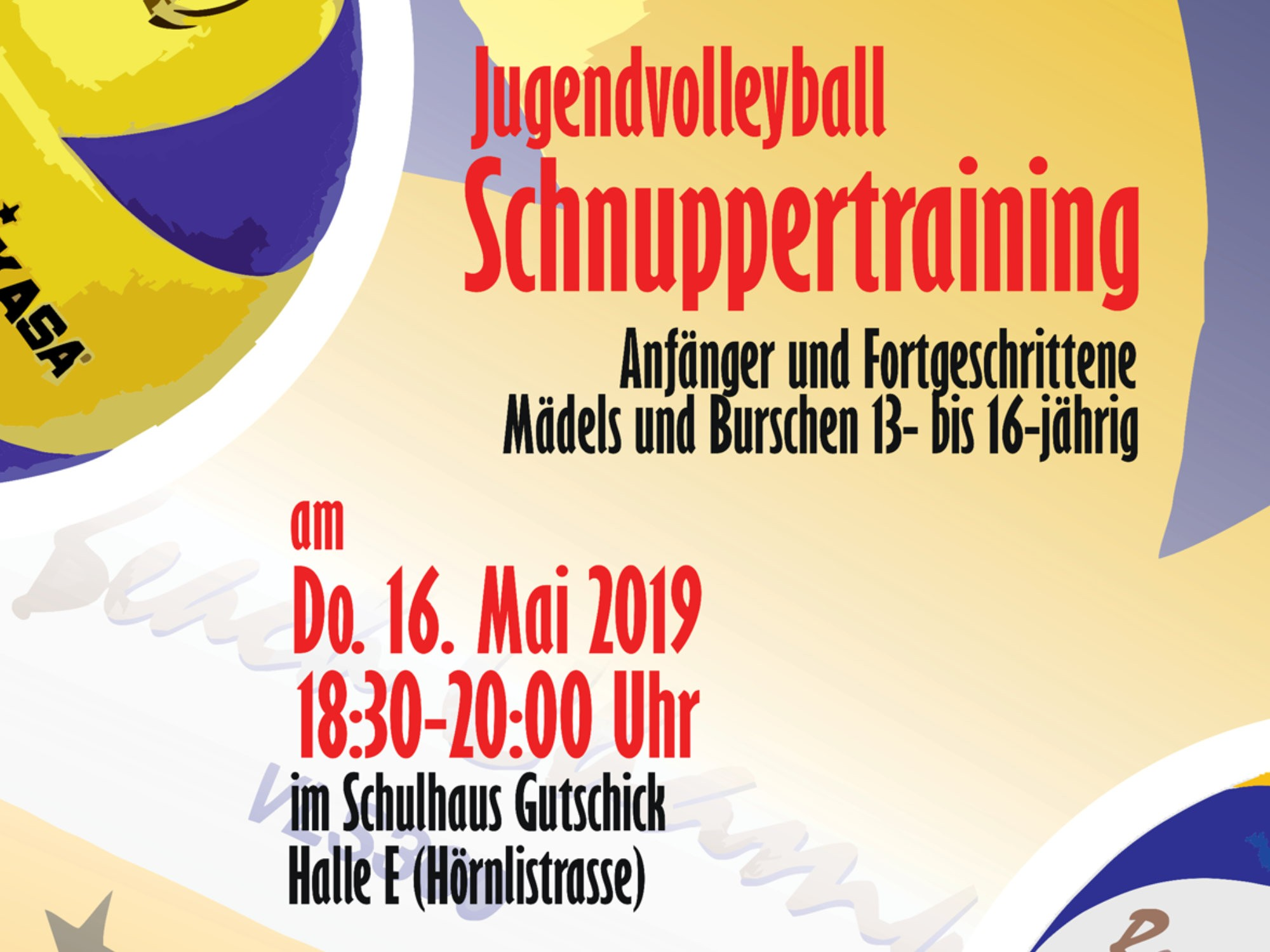 NSW-Jugendvolleyball-Schnuppertraining 2019