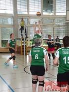 volleyball-turnfest-wetzikon-16_19