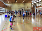 volleyball-karl-pollet-turnier-dietlikon-17_11