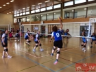 volleyball-karl-pollet-turnier-dietlikon-17_12