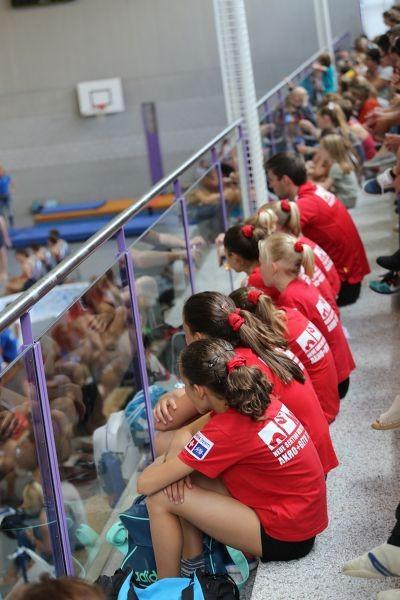Verbandsmeistertitel und Medaillen am SUS Geräteturn-Cup in Hünenberg